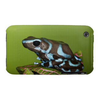 Native to Panama iPhone 3 Cover