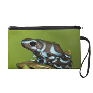 Native to Panama Wristlet Purse