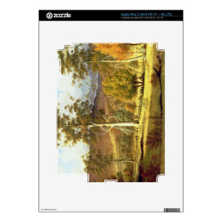 Natives in the Eucalypt Forest on Mills Plains, Pa iPad 3 Decal
