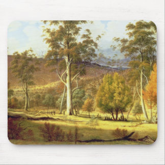 Natives in the Eucalypt Forest on Mills Plains, Pa Mouse Pad