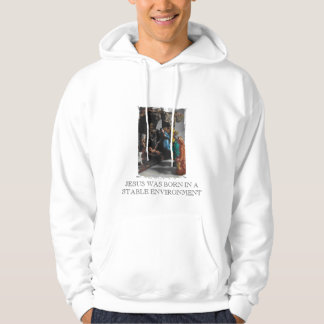 nativity, JESUS WAS BORN IN A STABLE ENVIRONMENT Hoodie