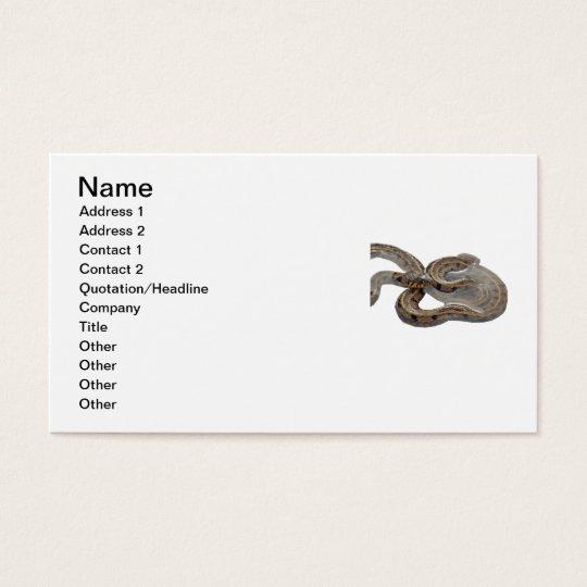Natrix Grass Snake Business Card