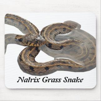 Natrix Grass Snake Mouse Pad