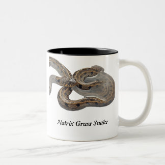 Natrix Grass Snake Two-Tone Coffee Mug