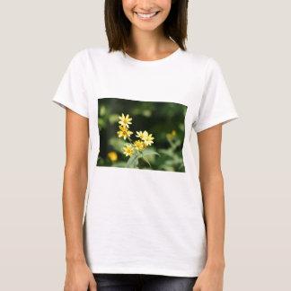 natrual bridge pic 002 T-Shirt