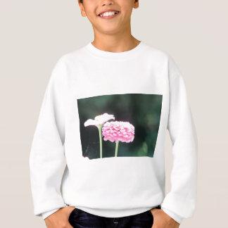 natrual bridge pic 103 sweatshirt
