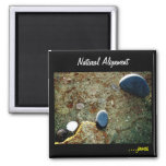 Natural Alignment Magnet