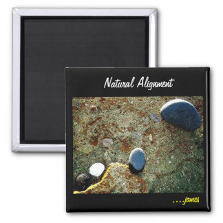 Natural Alignment Magnet