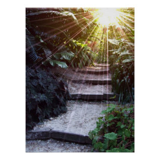 Natural Ascension Poster at Zazzle