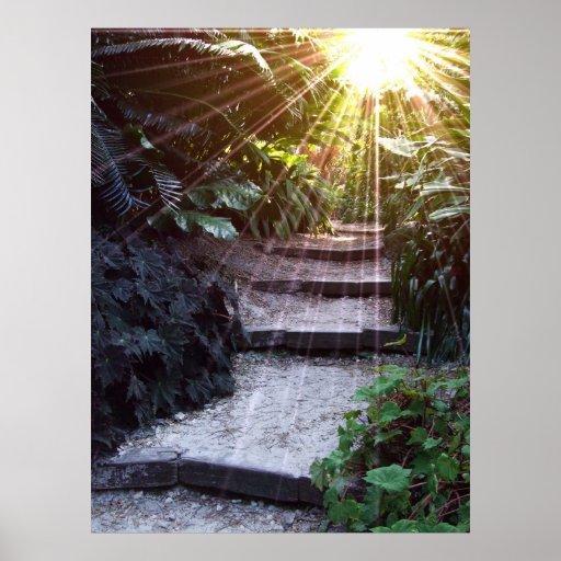 Natural Ascension Print