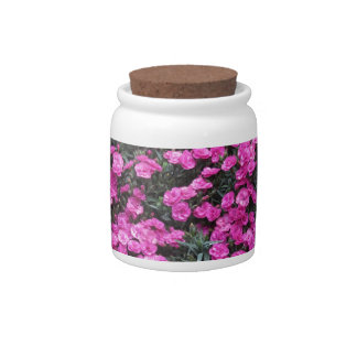 Natural background of purple carnation flowers candy dish
