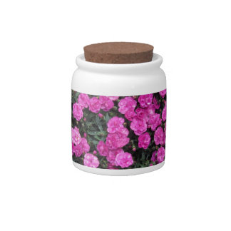 Natural background of purple carnation flowers candy jar