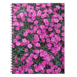 Natural background of purple carnation flowers notebook