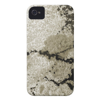 natural background vol 2 iPhone 4 Case-Mate case