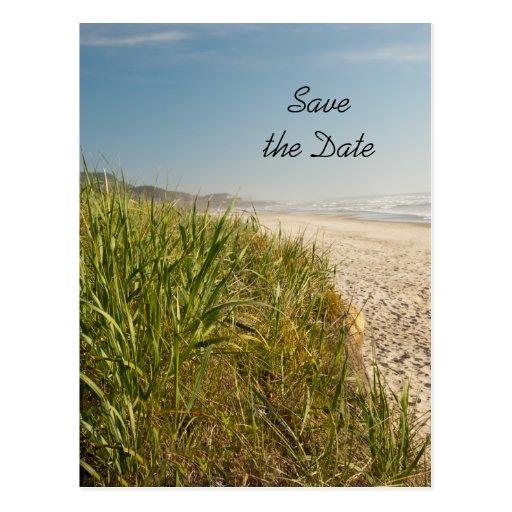 Natural Beach Wedding Save the Date Postcard