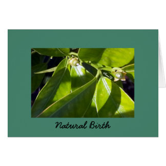 Natural Birth   Greeting/Note Card