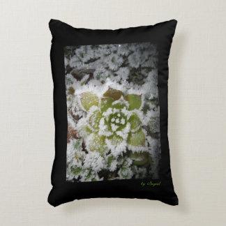 natural black cushion photo winter snows white