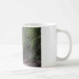 Natural Bridge Coffee Mug