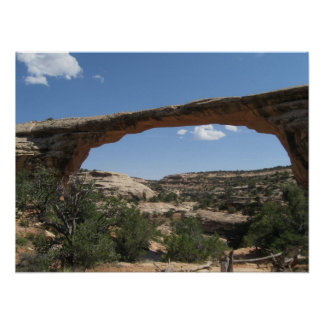 Natural Bridges National Monument Poster
