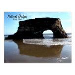 Natural Bridges Postcard