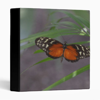 Natural Butterfly 3 Ring Binder