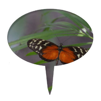 Natural Butterfly Cake Topper
