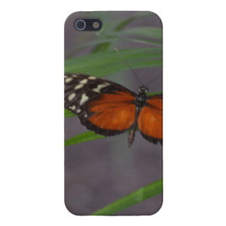 Natural Butterfly Case For iPhone SE/5/5s