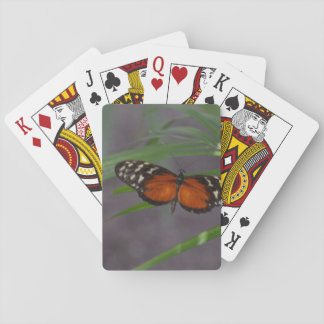 Natural Butterfly Deck Of Cards