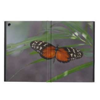 Natural Butterfly iPad Air Cover