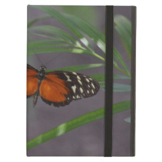 Natural Butterfly iPad Air Covers