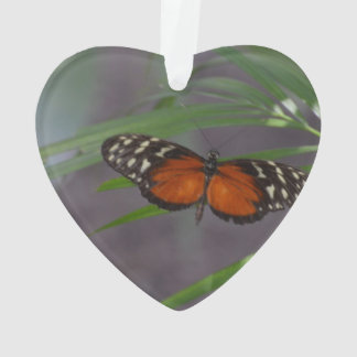 Natural Butterfly Ornament