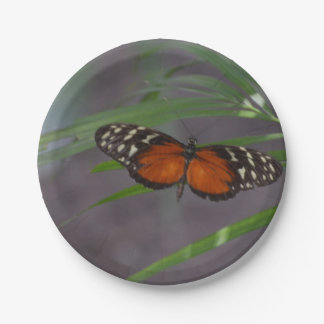 Natural Butterfly Paper Plate