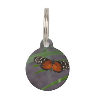 Natural Butterfly Pet Name Tag