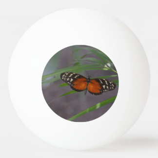 Natural Butterfly Ping Pong Ball