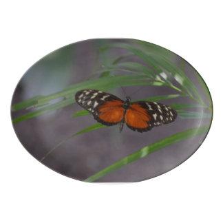 Natural Butterfly Porcelain Serving Platter