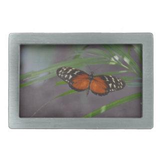 Natural Butterfly Rectangular Belt Buckle