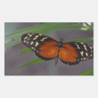 Natural Butterfly Rectangular Sticker