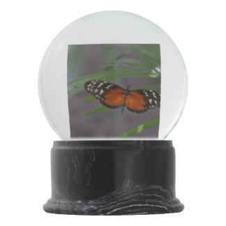 Natural Butterfly Snow Globe