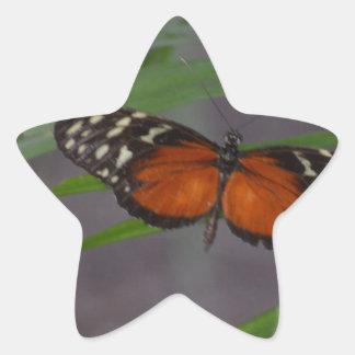 Natural Butterfly Star Sticker