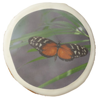 Natural Butterfly Sugar Cookie