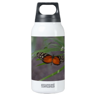 Natural Butterfly Thermos Water Bottle