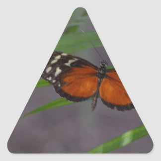 Natural Butterfly Triangle Sticker