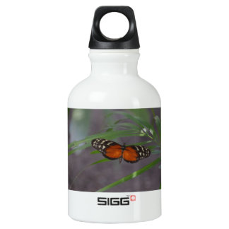 Natural Butterfly Water Bottle