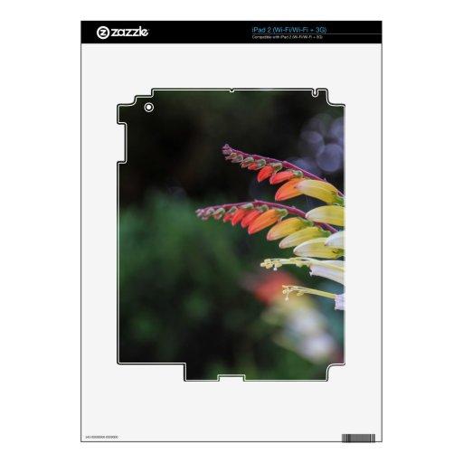 Natural Calcomanía Para El iPad 2