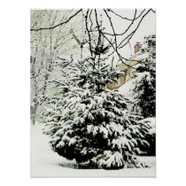 Natural Christmas Tree Poster