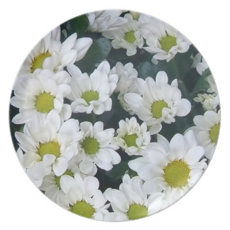 natural collection vol 5 daisy  flower plate
