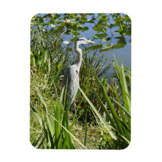 Natural de la Florida Imán Flexible