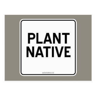 NATURAL DE LA PLANTA POSTALES