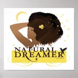 Natural Dreamer Poster/Print print