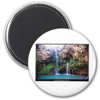 Natural Falls Magnet